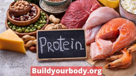 Proteins for getting the perfect body shape
