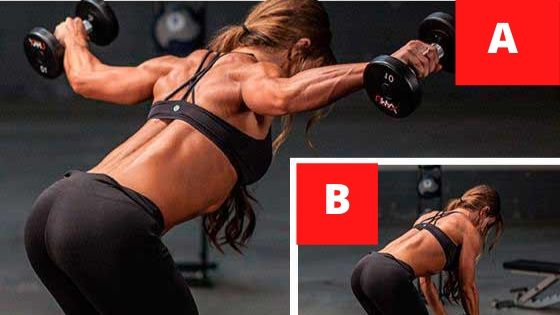 back t raises for reducing back fat