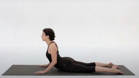 Cobra pose, yoga for beginners