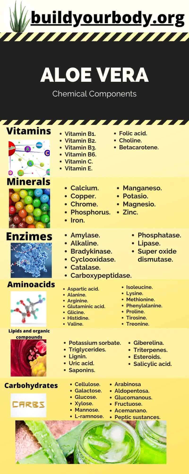 Infographics of the chemical components of Aloe Vera