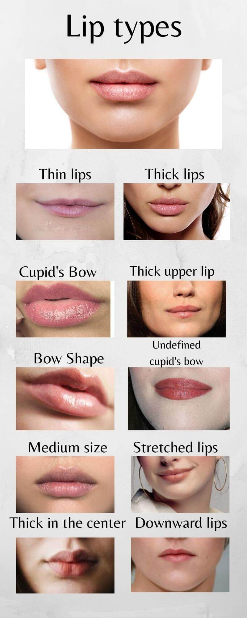 Infographic of all lip shapes