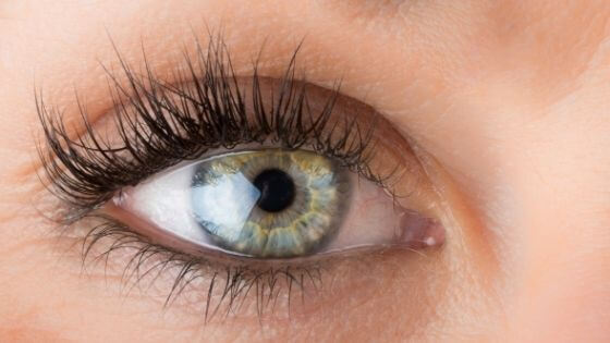 Can you curl your eyelashes without a kit?