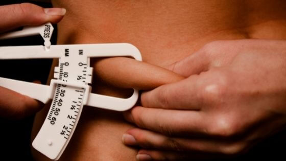 What body fat percentage is obese?